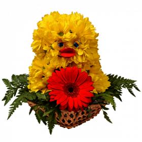 Мастер-класс «Солнечный цыплёнок» из жёлтых хризантем